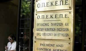 ΟΠΕΚΕΠΕ: Πληρωμή ύψους 15 εκατ. ευρώ σε 1.872 δικαιούχους