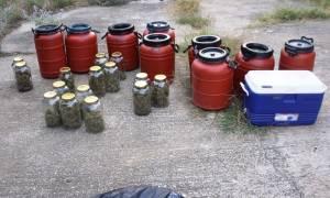 Θεσσαλονίκη: Εντοπίστηκε εργαστήριο υδροπονικής κάνναβης στους Ταγαράδες (pics)