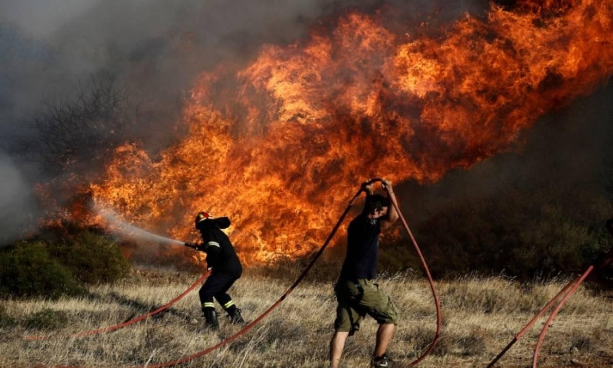 Φωτιά τώρα: Μεγάλη πυρκαγιά στη Βιστωνίδα