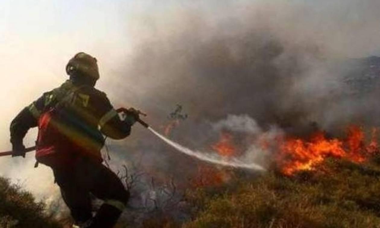 Φωτιά σε εξέλιξη στα Δερβενοχώρια