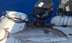 Έπιασε ψάρι 30 κιλών με το... καλάμι του!(pics)