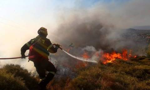 Fire breaks out in Skado on the island of Naxos