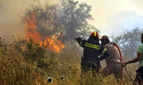 Φωτιά ΤΩΡΑ: Πυρκαγιά στην Κέρκυρα