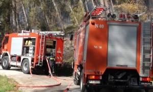 Υψηλός σήμερα (3/9) ο κίνδυνος πυρκαγιάς - 32 πυρκαγιές το τελευταίο 24ωρο