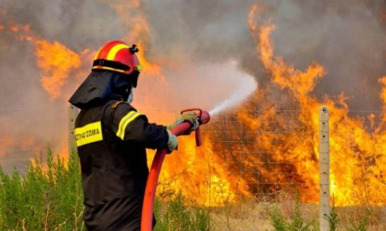 Φωτιά Live: Συναγερμός για μεγάλη πυρκαγιά κοντά σε σπίτια στον Κουβαρά