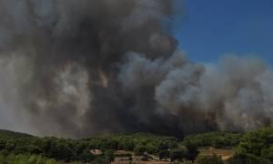 Μεγάλη φωτιά στη Μεσσηνία