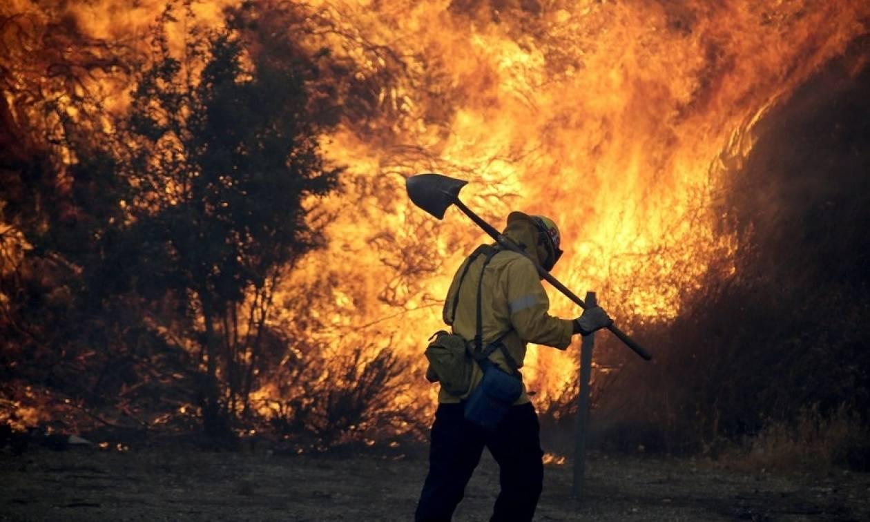 Χίλιοι πυροσβέστες στη μάχη με τις φλόγες στη μεγαλύτερη πυρκαγιά στην ιστορία του Λος Άντζελες
