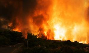 Φωτιά ΤΩΡΑ: Πυρκαγιά στο Φλομοχώρι Λακωνίας (pic)