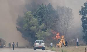Φωτιά στον Ταΰγετο - Πολύ υψηλός σήμερα ο κίνδυνος εκδήλωσης πυρκαγιάς - Δείτε πού
