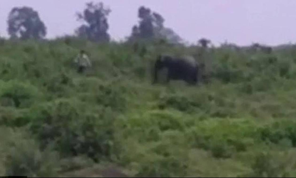 Σοκαριστικό βίντεο: Ελέφαντας ποδοπατά άνδρα που πήγε να βγάλει selfie μαζί του