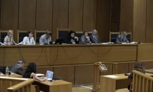 Δίκη Χ.Α. - Μάρτυρας: «Η Χρυσή Αυγή είναι οργάνωση πολιτικοστρατιωτική»