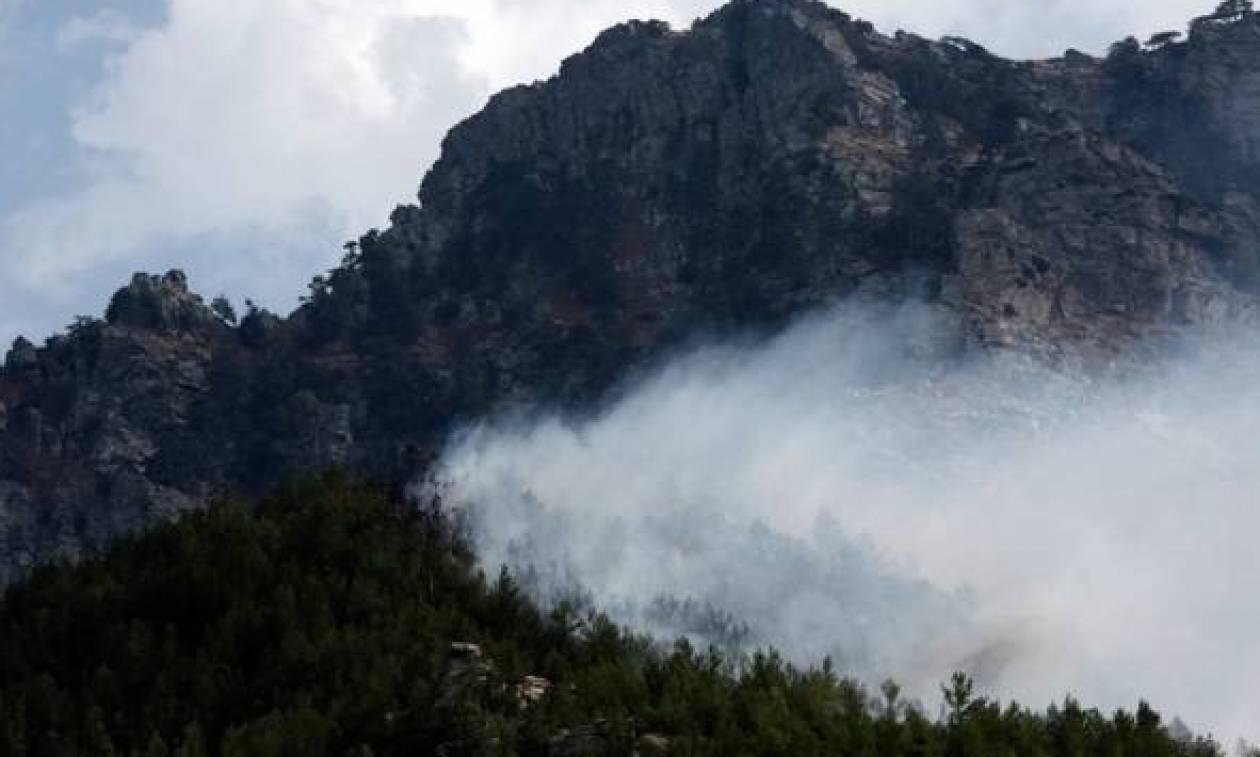 Πυρκαγιά ΤΩΡΑ σε δασική έκταση στη Ρόδο