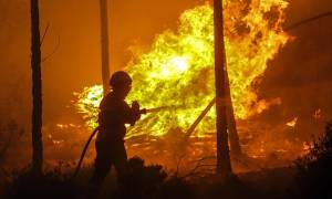 Φωτιά ΤΩΡΑ: Πυρκαγιά στο Καλλίδρομο Φθιώτιδας