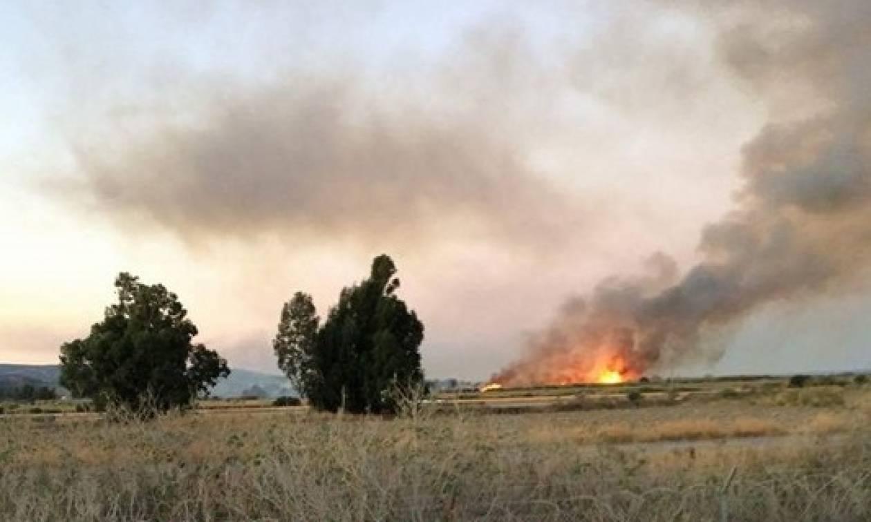 Φωτιά: Υπό έλεγχο η πυρκαγιά στο Τυμπάκι της Κρήτης