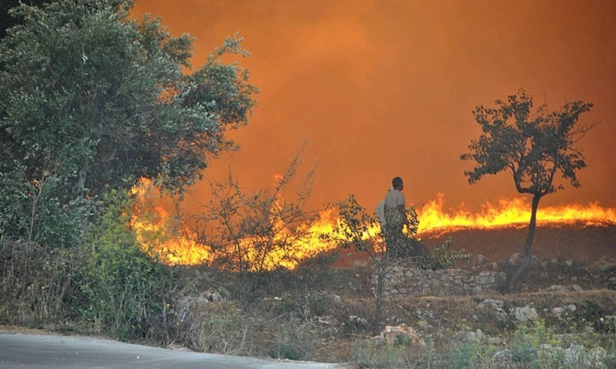 Φωτιά ΤΩΡΑ στην Αχαΐα