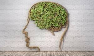 Θέλετε «κοφτερό» μυαλό μέχρι τα γεράματα; Ακολουθήστε τις 7 συμβουλές των ειδικών