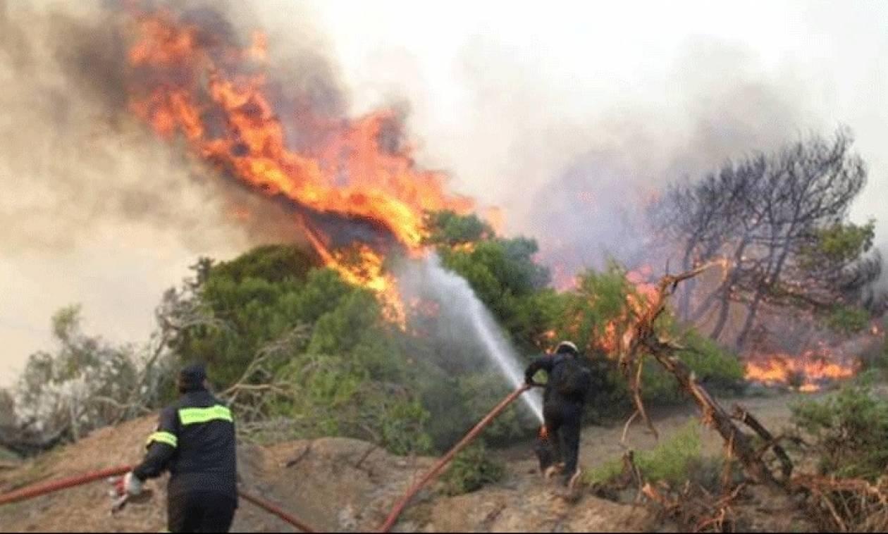 Είκοσι τέσσερις αγροτοδασικές πυρκαγιές το τελευταίο 24ωρο