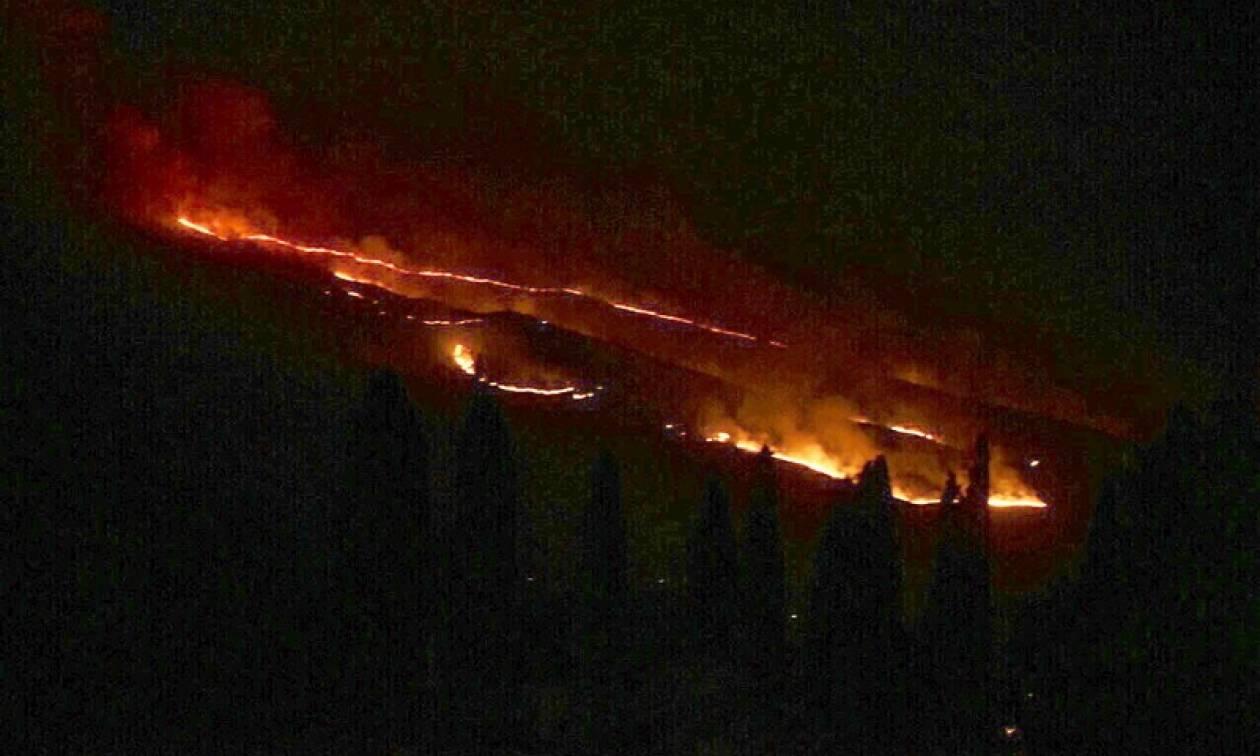 Φωτιά ΤΩΡΑ: Yπό μερικό έλεγχο η πυρκαγιά στην περιοχή Χαβριάτα Κεφαλονιάς (pic)