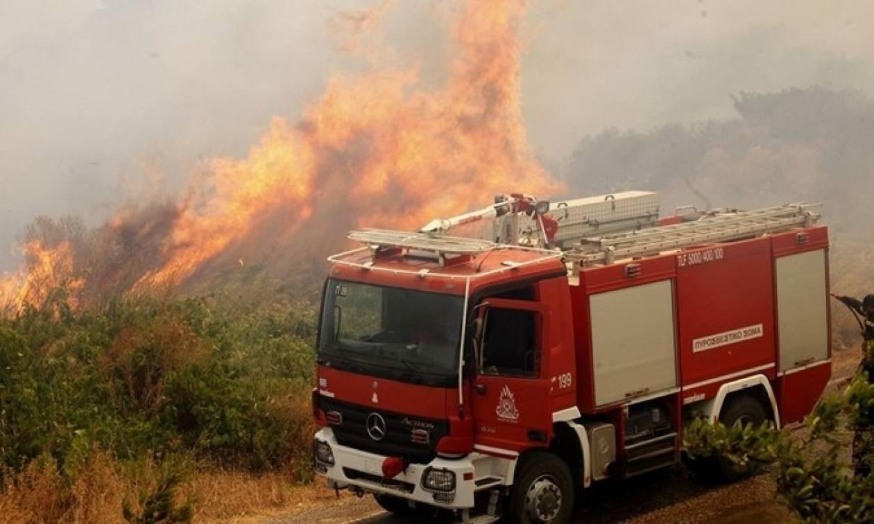 Σε εξέλιξη μεγάλη φωτιά στα Κανάλια Κέρκυρας: Η πυρκαγιά πλησιάζει σπίτια