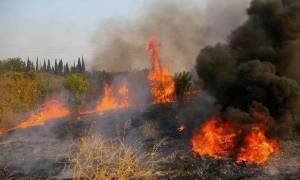 Μεγάλη φωτιά με δύο μέτωπα στη δυτική Αχαΐα: Απειλείται η κοινότητα Άρλα