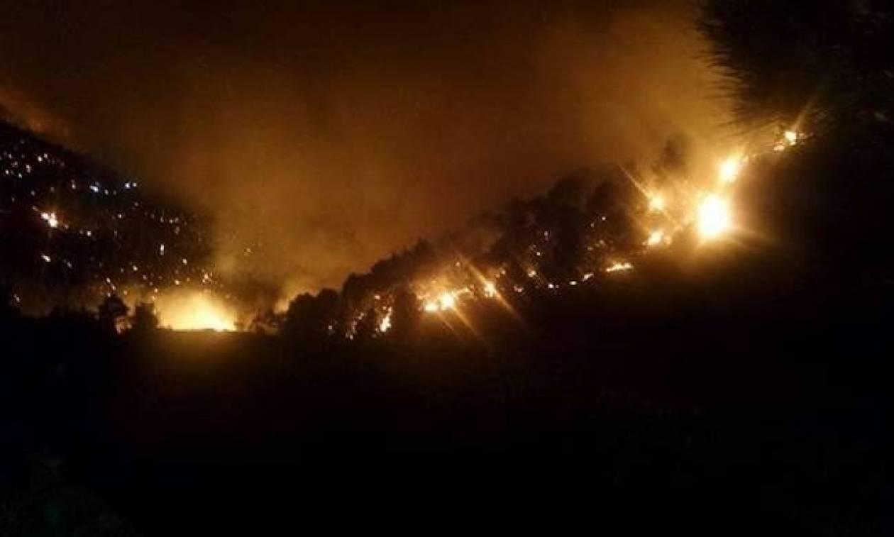 Φωτιά ΤΩΡΑ: Σε ύφεση η πυρκαγιά στην Κοκκινιά Τροιζηνίας (pic)