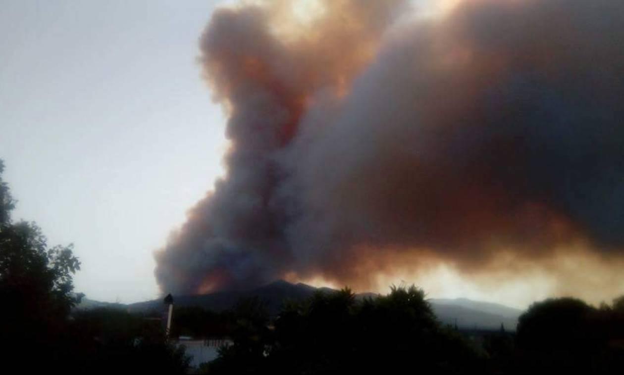 Φωτιά ΤΩΡΑ: Πύρινη κόλαση στην Αχαΐα - Στις φλόγες σπίτια και περιουσίες