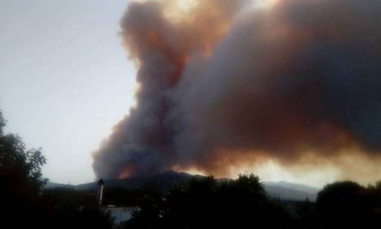 Вторые сутки продолжается борьба с пожаром в области Ахаиа