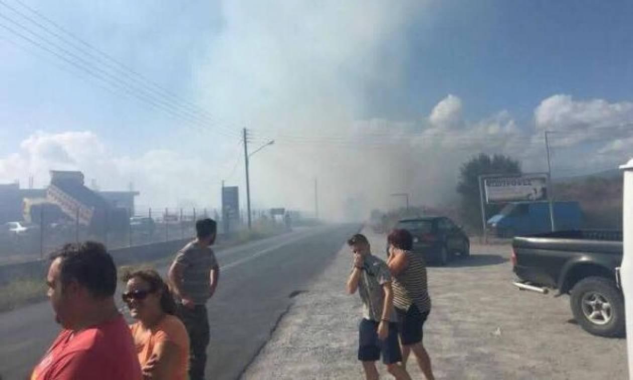 Δύο φωτιές στη Μεσσηνία - Η πυρκαγιά στον Μελιγαλά απειλεί σπίτια (vid)
