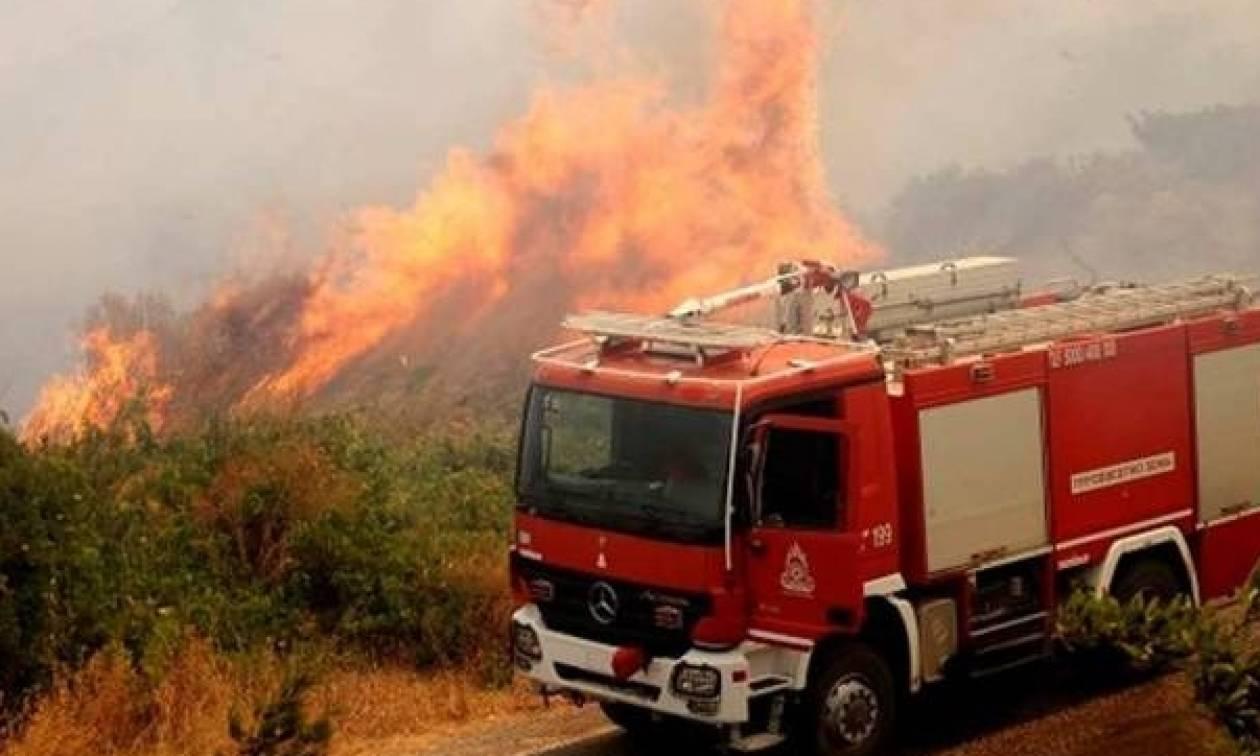 Πυρκαγιά ΤΩΡΑ: Καίγεται δασική έκταση στη Ζαχάρω