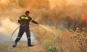 Φωτιά ΤΩΡΑ στη Λάρισα: Πυρκαγιά στην περιοχή της Αγίας Παρασκευής