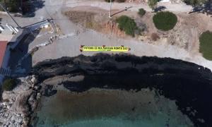 WWF: Μήνυση κατά παντός υπευθύνου για τη ρύπανση στον Σαρωνικό