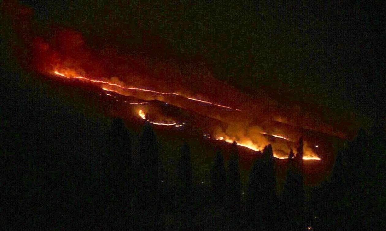 Έσβησε η πυρκαγιά στην Αγία Παρασκευή Λάρισας