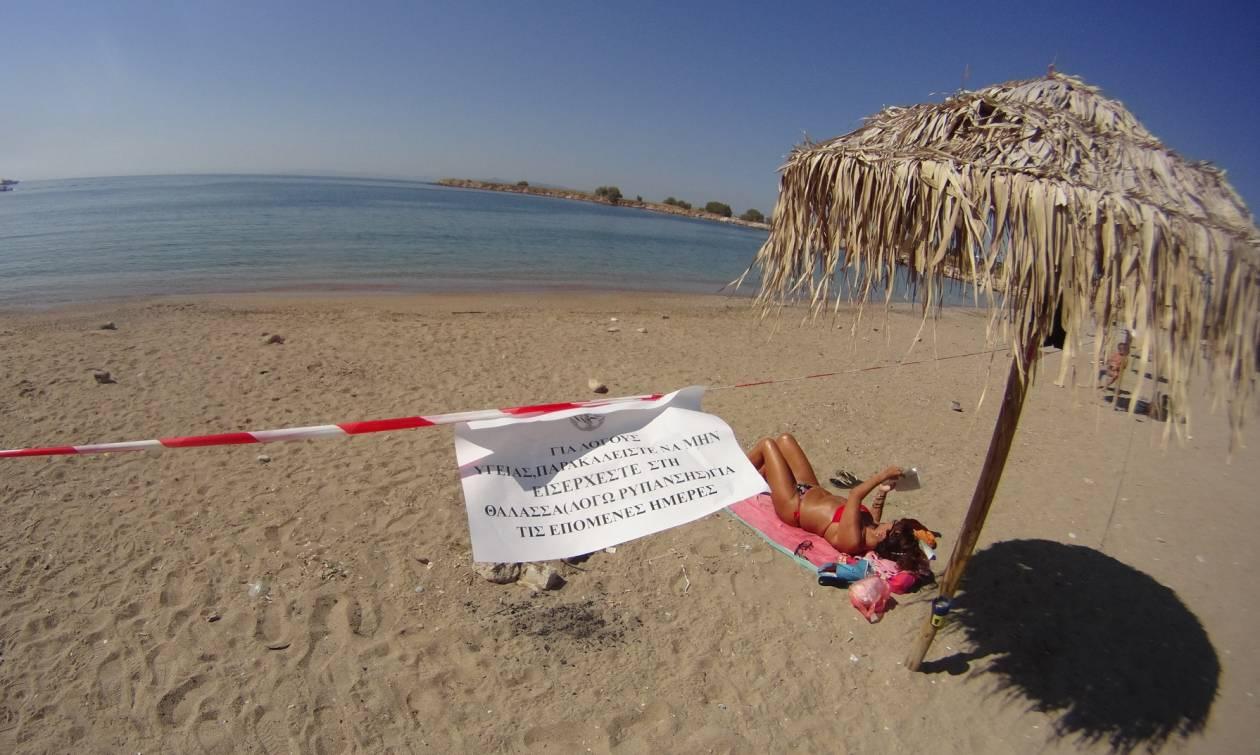 Καταγγελία - «βόμβα» Γεωργιάδη: Στέλεχος του ΣΥΡΙΖΑ στην ομάδα διαχείρισης του «Αγία Ζώνη ΙΙ»