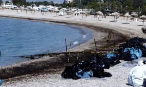 «Αγία Ζώνη»: «Απορούμε κι εμείς με την πετρελαιοκηλίδα» - Αιχμές από την πλοιοκτήτρια εταιρεία