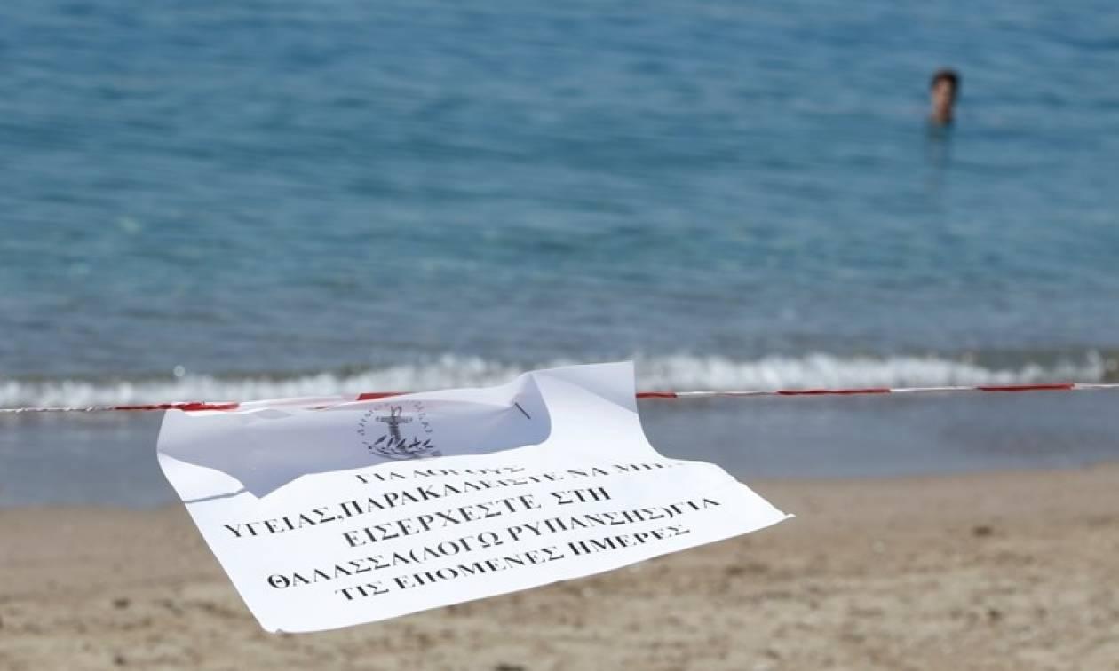 Απίστευτο! Κάνουν μπάνιο στη θάλασσα παρά την απαγόρευση της κολύμβησης στον Σαρωνικό (pics)