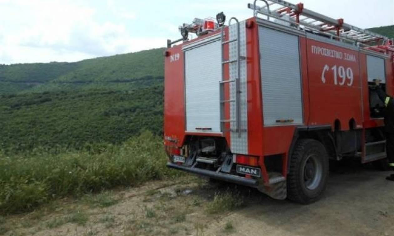 Ο χάρτης πρόβλεψης κινδύνου πυρκαγιάς για τη Δευτέρα 18/9 (pic)