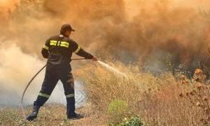 Φωτιά ΤΩΡΑ: Δύο πύρινα μέτωπα στην Ηλεία