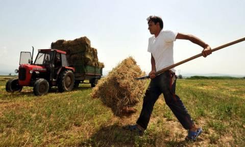 Εξόφληση αγροτών σε 60 ημέρες - Γάλα και κρέας με... ονοματεπώνυμο