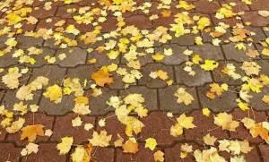 Ξεκινά η φθινοπωρινή ισημερία: Τι είναι - Όλα όσα πρέπει να ξέρετε!