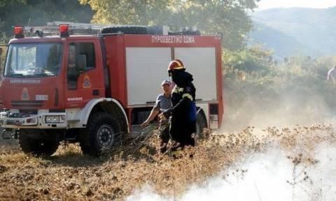 «Συναγερμός» για πυρκαγιές: Δείτε ποιες περιοχές βρίσκονται «στο κόκκινο»