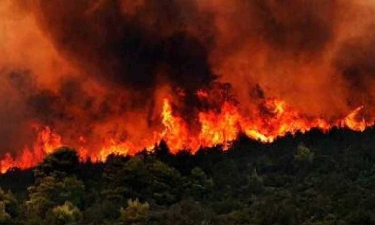 Φωτιά Live: Μεγάλη πυρκαγιά ΤΩΡΑ στη Ζάκυνθο κοντά σε μοναστήρι