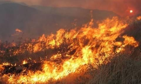 Καίγεται για τρίτη ημέρα δάσος στην Κορινθία