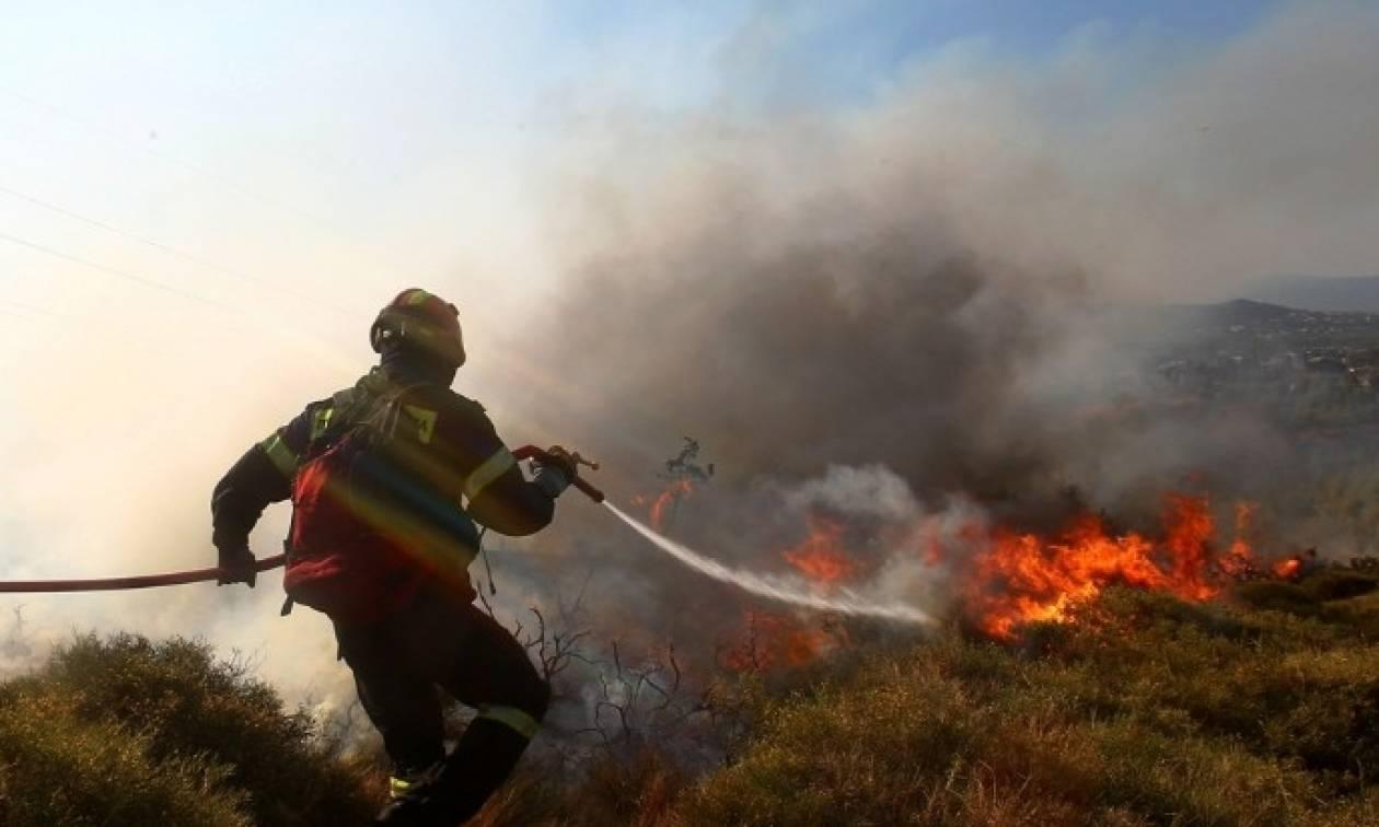 Φωτιά Live: Μεγάλη πυρκαγιά στη Θήβα