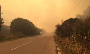 Μεγάλη φωτιά ΤΩΡΑ στη Χαλκιδική - Απειλούνται σπίτια (pic+vids)