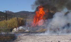 Δύο πυρκαγιές στη Δράμα - Μάχη από τα εναέρια μέσα πριν νυχτώσει