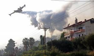 Φωτιά τώρα: Ο πύρινος εφιάλτης επέστρεψε – Κάηκαν σπίτια στην Χαλκιδική