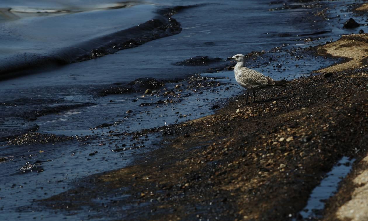 Ανατροπή! Το «Siros» ξεκίνησε την απάντληση των πετρελαιοειδών από το βυθισμένο «Αγία Ζώνη ΙΙ»