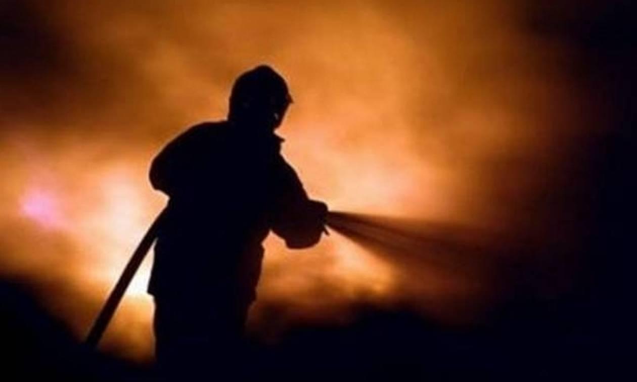 Φωτιά: Μαίνεται η φωτιά σε πευκοδάσος στην Καλαμπάκα
