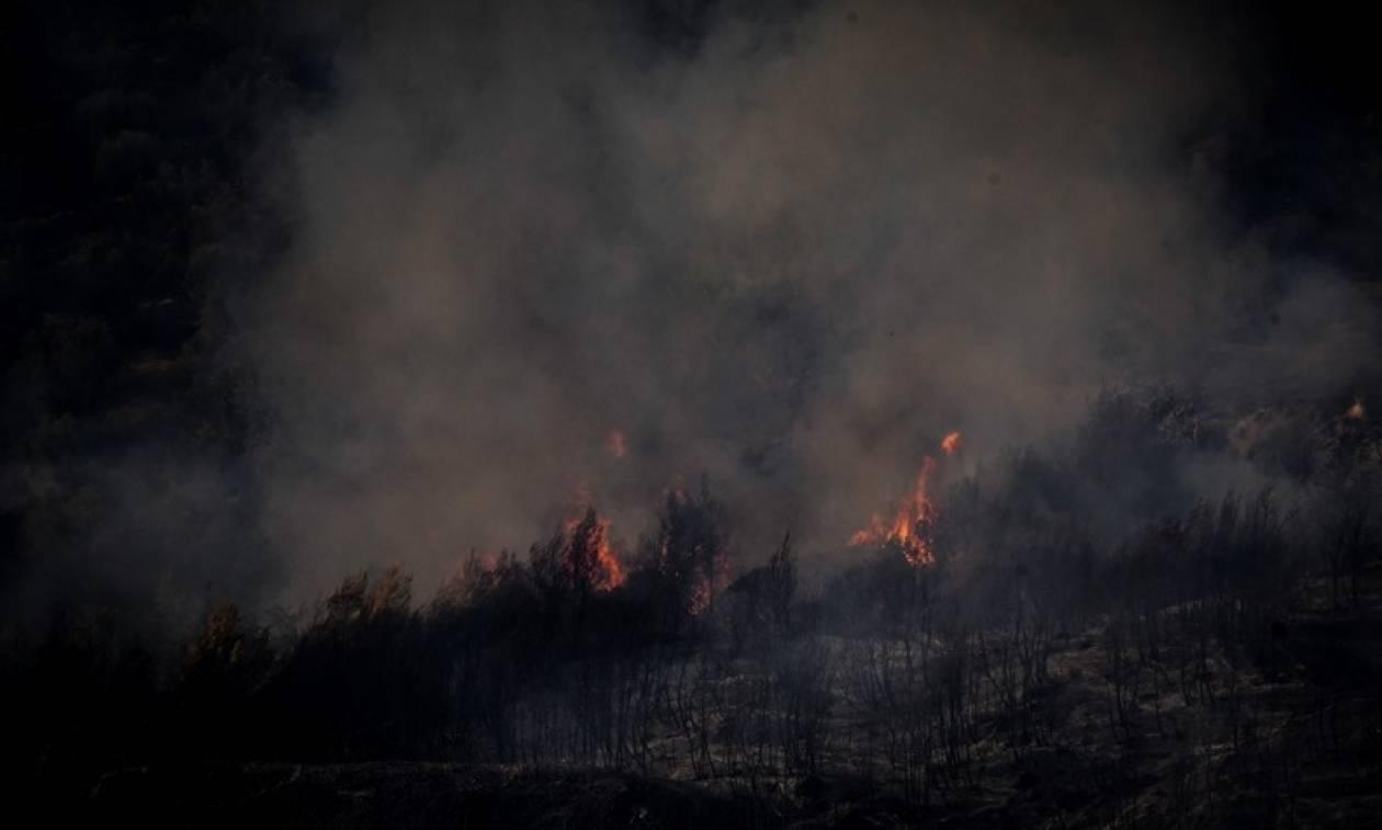 Ολονύχτια μάχη με τις φλόγες στο χωριό Μάκιστος – Η φωτιά έφτασε στις αυλές των σπιτιών (pics)