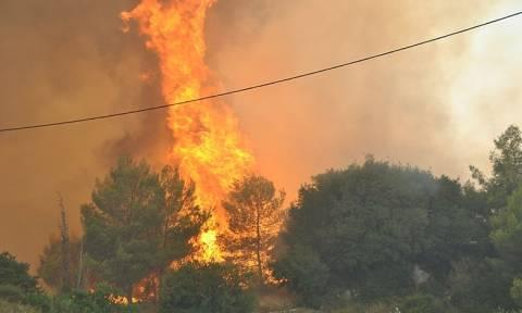 Φωτιά ΤΩΡΑ: Μεγάλη πυρκαγιά μαίνεται στην Αρχαία Ολυμπία